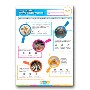 Lee Kong Chian Natural History Museum Activity Sheets