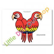 birdsoftherainforest-galleryimage-2