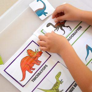 Dino Matching Book 2