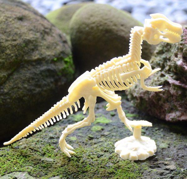 TTT005-DinoFossilDig-1