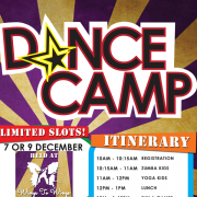 Wings to Wings December 2016 Holiday Dance Camps