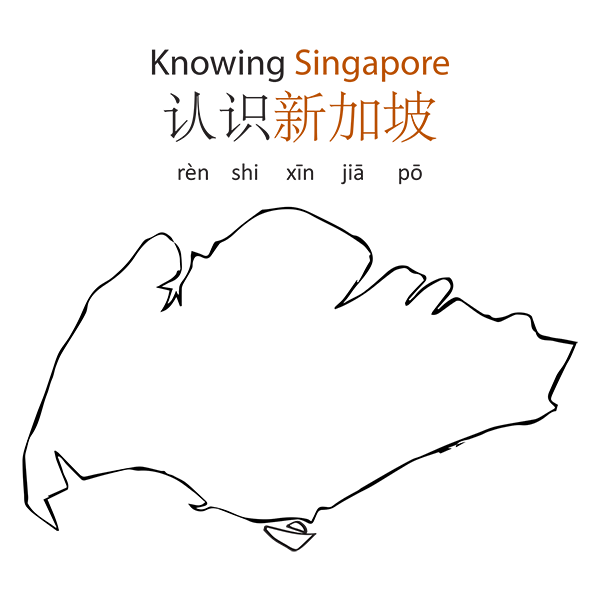 Knowing Singapore