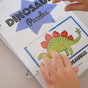 Dino Matching Book